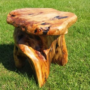 root wood stool 1