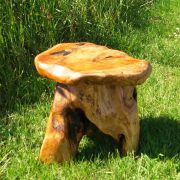 root wood stool 6