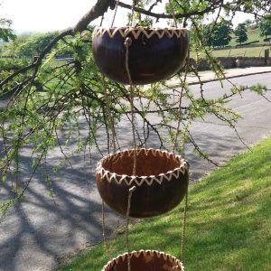 hanging coconut planters